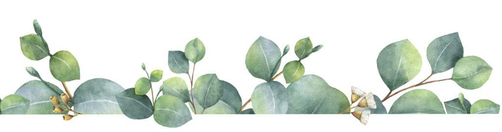 Rebalance Naturopathy